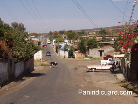 Curimeo, municipio de Panindicuaro