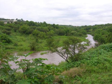 Trecho del arroyo, entre el puente y la presita del mismo nombre