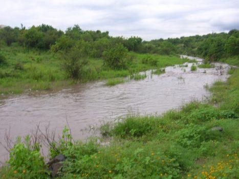 Como para agarrar fuerza, el arroyo toma una curva, cerca del Puente Nigromante