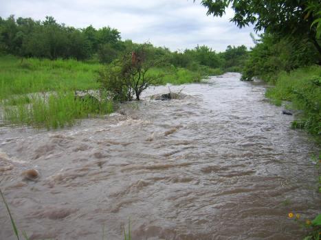 Un poco alborotadas, las aguas antes de llegar a la ciudad