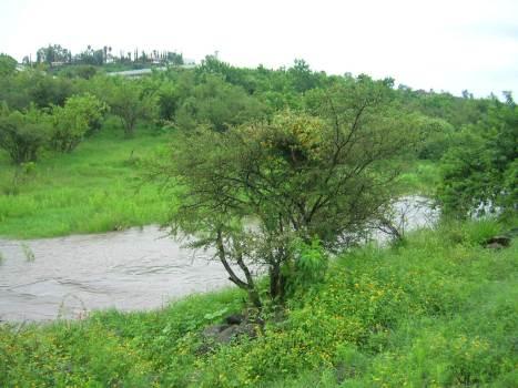 La creciente enanchó el cauce del arroyo por ambas margenes. Al fondo, arriba, el Colegio Vasco de Quiroga