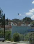 La bandera desde una colonia cercana