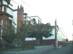 Virgen de la Esperanza. Calle de Ario donde está ubicado el Colegio América